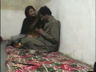 Pakistanilainen kätketty nokan seksi