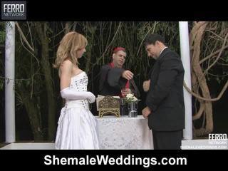 Pha của alessandra, thiên thần, senna qua đồng tính weddings