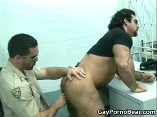 gay, muscle, bear