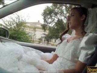 Bruden till vara amirah adara ditched av henne fiance och körd