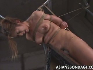 Asian Pussy Bond And Dildoed