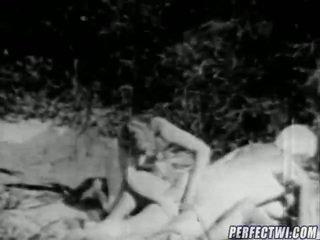 Çift e bardhë chicks, një i errët fellow