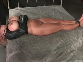 stora bröst, milfs, hd porn