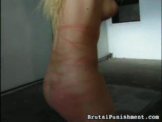 Velký sbírka na bondáž, nadvláda, sadismus, masochismu porno klipy od brutální punishment