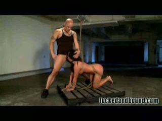 tits, gailis, deepthroat