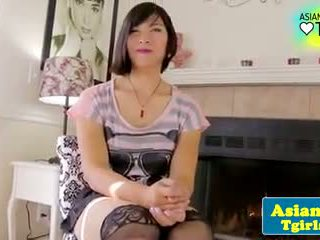 Solo asian shemale in stockings posing