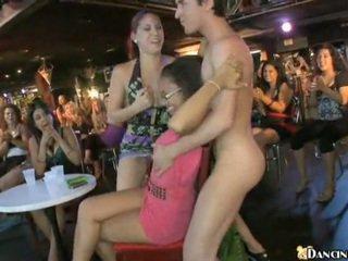 Novo male stripper