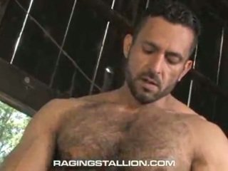 gay stud jerk, gay studs blowjobs, gay grote man