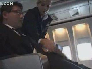 Amerikaans stewardess 1