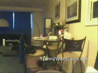 Τραβεστί gets web κάμερα σφηνάκι χύσι