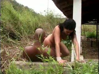 Brazilský pohlaví slavery