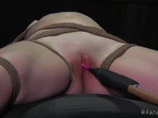 Extremo bondage e sadistic tratamento