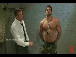 homoseksuāls, muskulis, rieciens