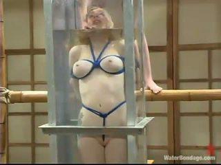 Adrianna nicole appreciates being drowned と got laid 約 a クソ おもちゃ
