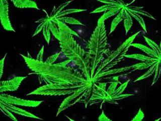 punk, smoke, pierre, grass