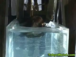 quality japanese, bizarre free, schoolgirl fun