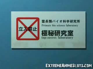 beste groot kanaal, pik film, ideaal japanse mov
