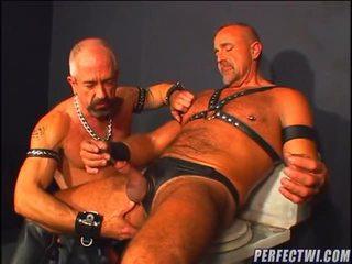 verkossa homo tuore, paras homot verkossa, sinua homoseksuaali katsella