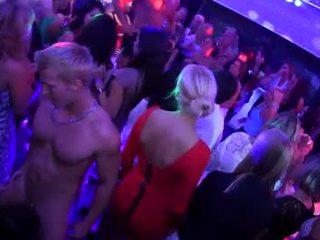 Partying cfnm sluts suck dicks