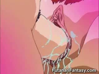 phim hoạt hình, hentai, cây có bông dùng làm thuốc nhuộm, phim hoạt hình