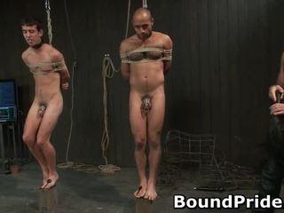 Homo slaves hankkia electro therapy alkaen chaps