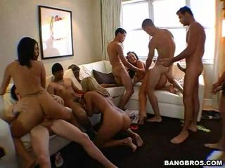 great groupsex online, cock ride, pornstars