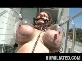 brunette, gros seins, torture