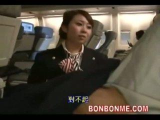 เด็กเสิร์ฟ เพศสัมพันธ์ ด้วย passenger