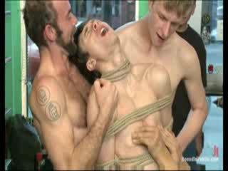 הומוסקסואל, סוס הרבעה, גייה