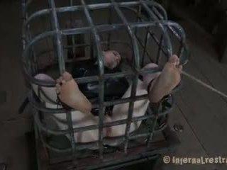Hazel Hypnotic Cage Tales2