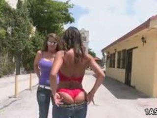 grote borsten, likken gepost, gratis anaal film