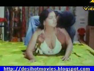 बड़े स्तन, भारतीय, हस्तियाँ