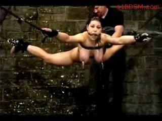 Meitene hanging uz verdzība nipple weights getting viņai vāvere fingered tortured ar ūdens līdz meistars uz the apakšzemes cietums