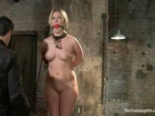 Sexy babe bound
