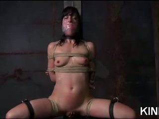 nice sex fucking, submission video, you bdsm porno