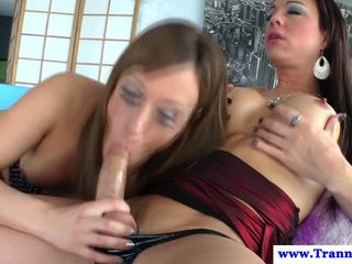 meer rimmen, online shemale and shemale porno, kwaliteit sexy tranny klem