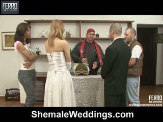 Alessandra tony shelady casamento sexo