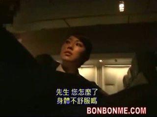 일본의, 입, stewardess
