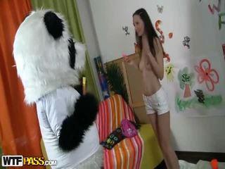 আবেগঘন cutie fucks surrounding সুন্দর panda