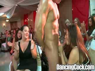 Dancingcock ballroom blitz