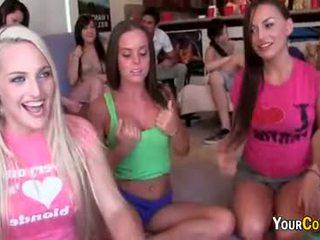 Slutty vereniging meisjes zetten op dildo tonen