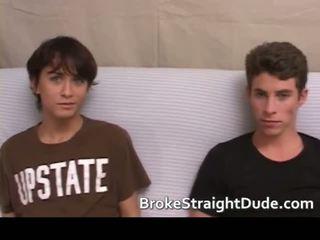 koledža, students, homoseksuāls