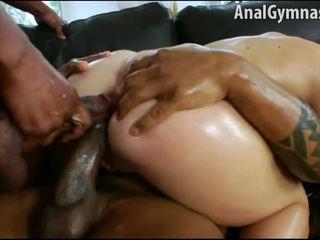 blowjobs, jumentos, anal