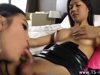 Shemale slams asian trannys ass