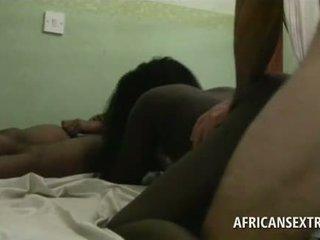 διαφυλετικός, μαύρο / ebony, ερασιτέχνης