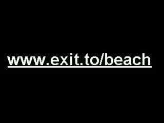 Big Public Nudist Swinger Beach Party