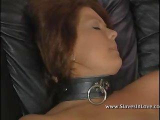 Slaaf za sexuality opleiding, gratis mobile slaaf hd porno b5